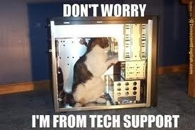 customer support tech support cat