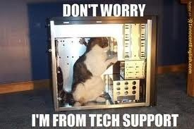 customer support tech support cat